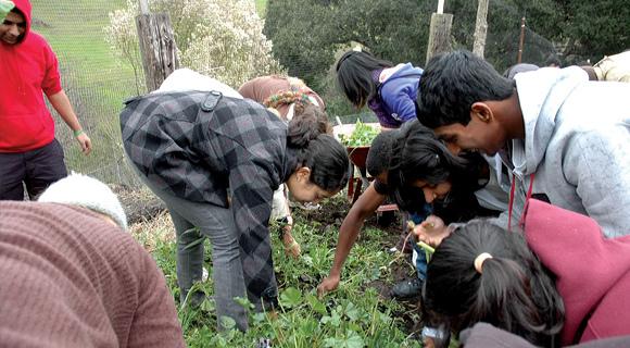 Amma.org: AYUDH Programs for Youth