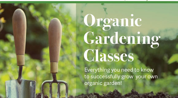 Organic Gardening Classes at MA Center DC