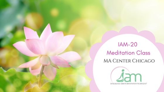 IAM-20 Mediation Class Image
