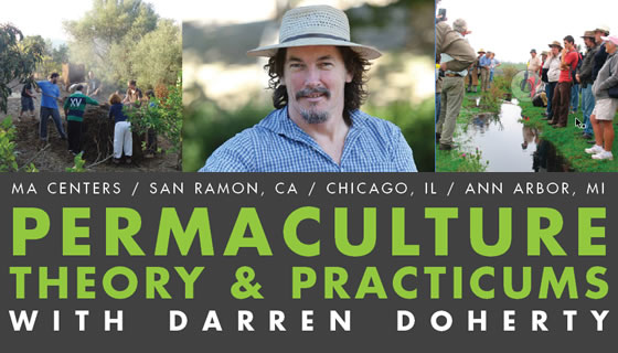 Permaculture Theory & Practicums with Darren Doherty