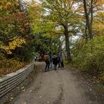 AYUDH volunteers walking down dirt road under autumn trees