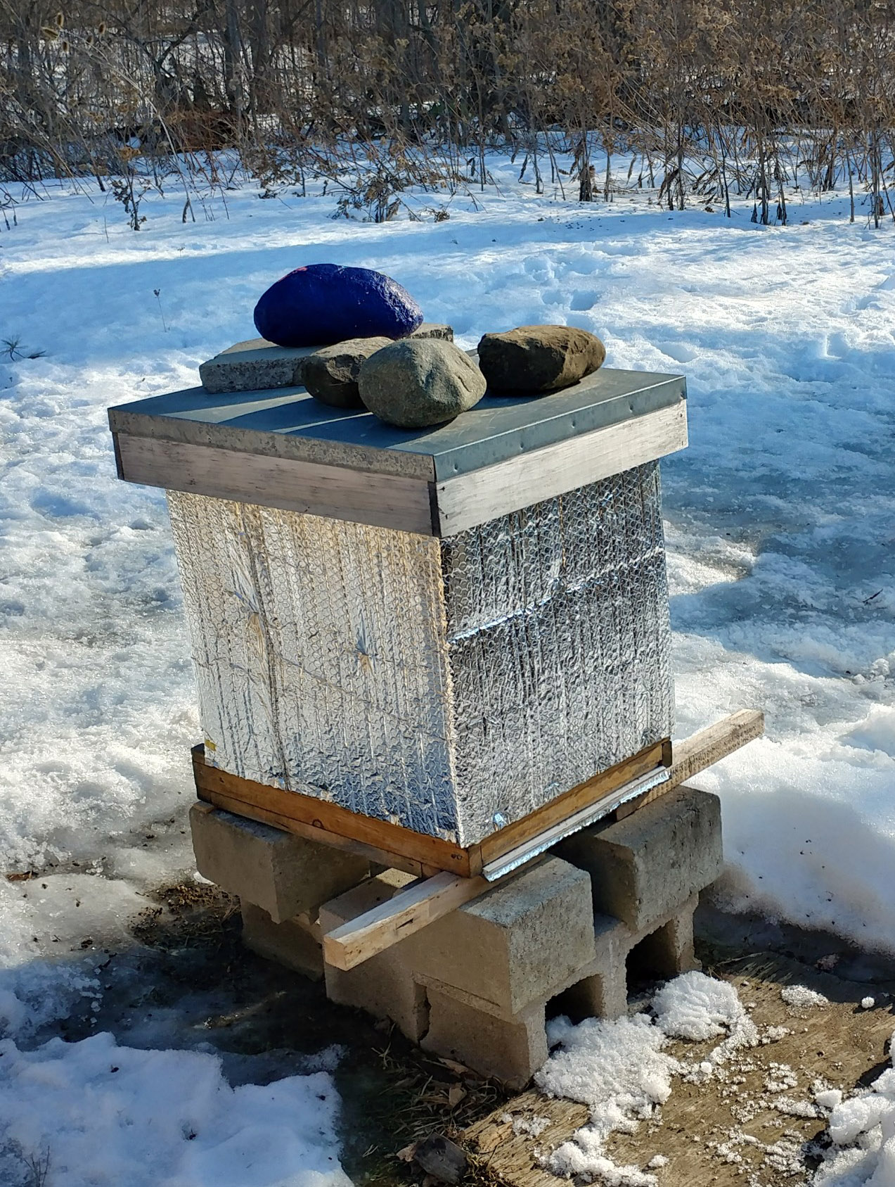 Hive in winter with snow around